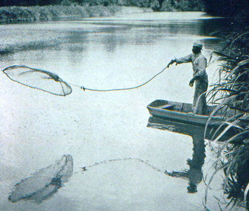 Gullah man throwing a fishing net into the water