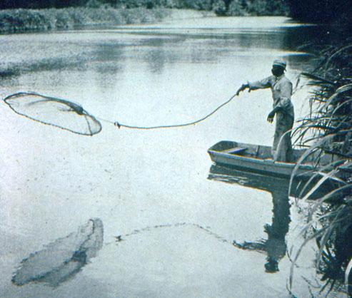 Gullah man throwing a fishing net into the water