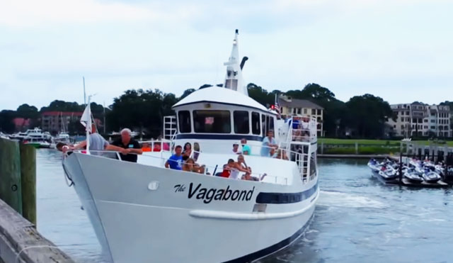 Video Thumbnail of Vagabonds New Eco Dolphin Tour