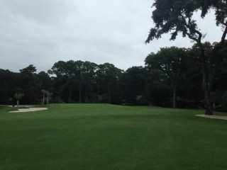 The approach to the 5th green at Harbour Town after green was moved to the left about 20 yards- note the old oak now to the far right of the approach.