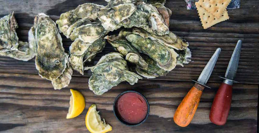 Shelled oysters with dressings and shucking knives on HIlton Head Island