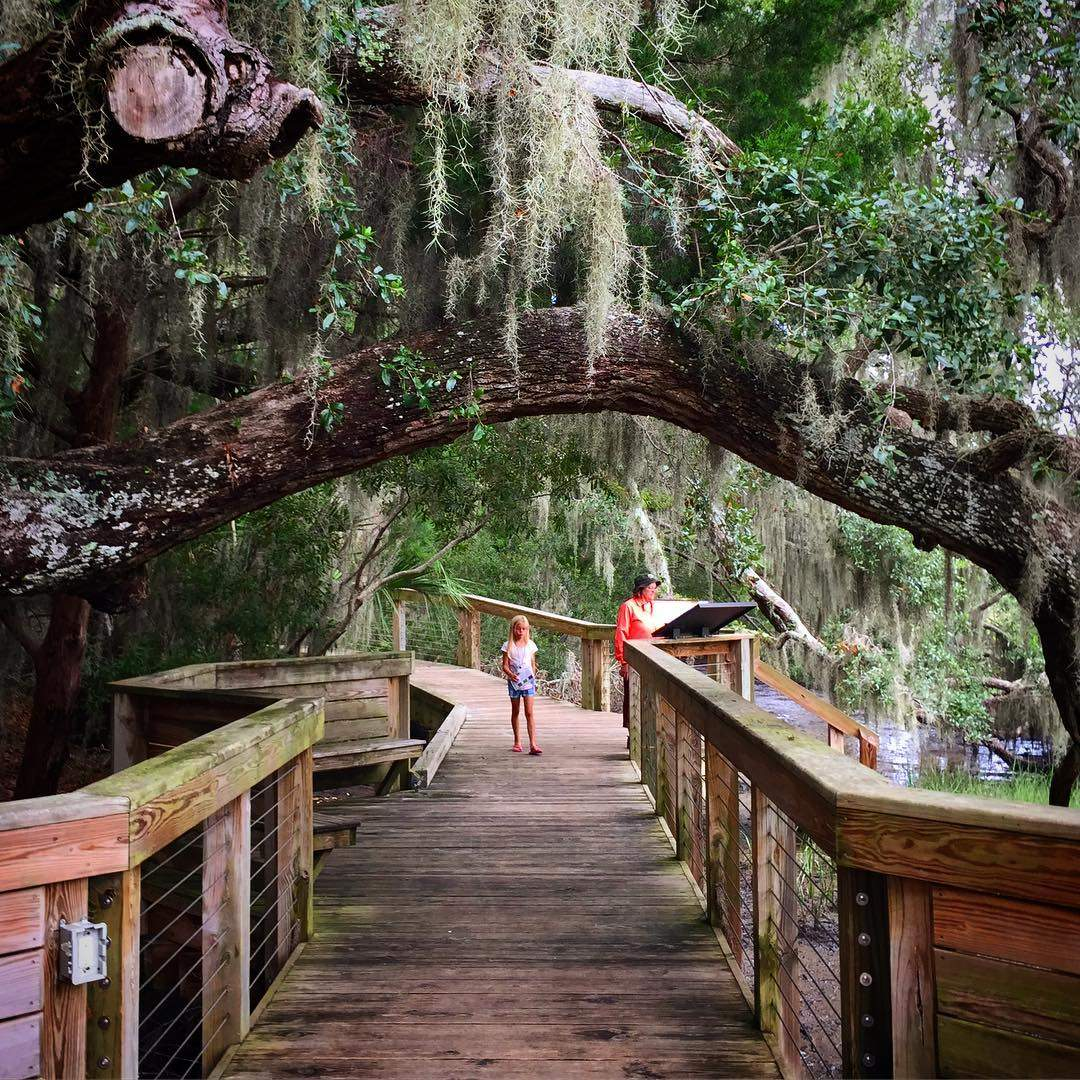 Children walking on the boardwalk around the Coastal Discovery Museum on Hilton Head Island