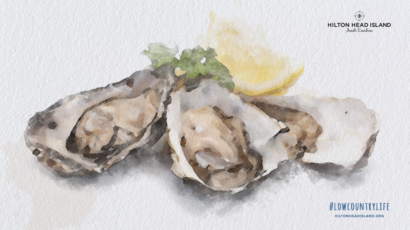 1366x768 oyster background
