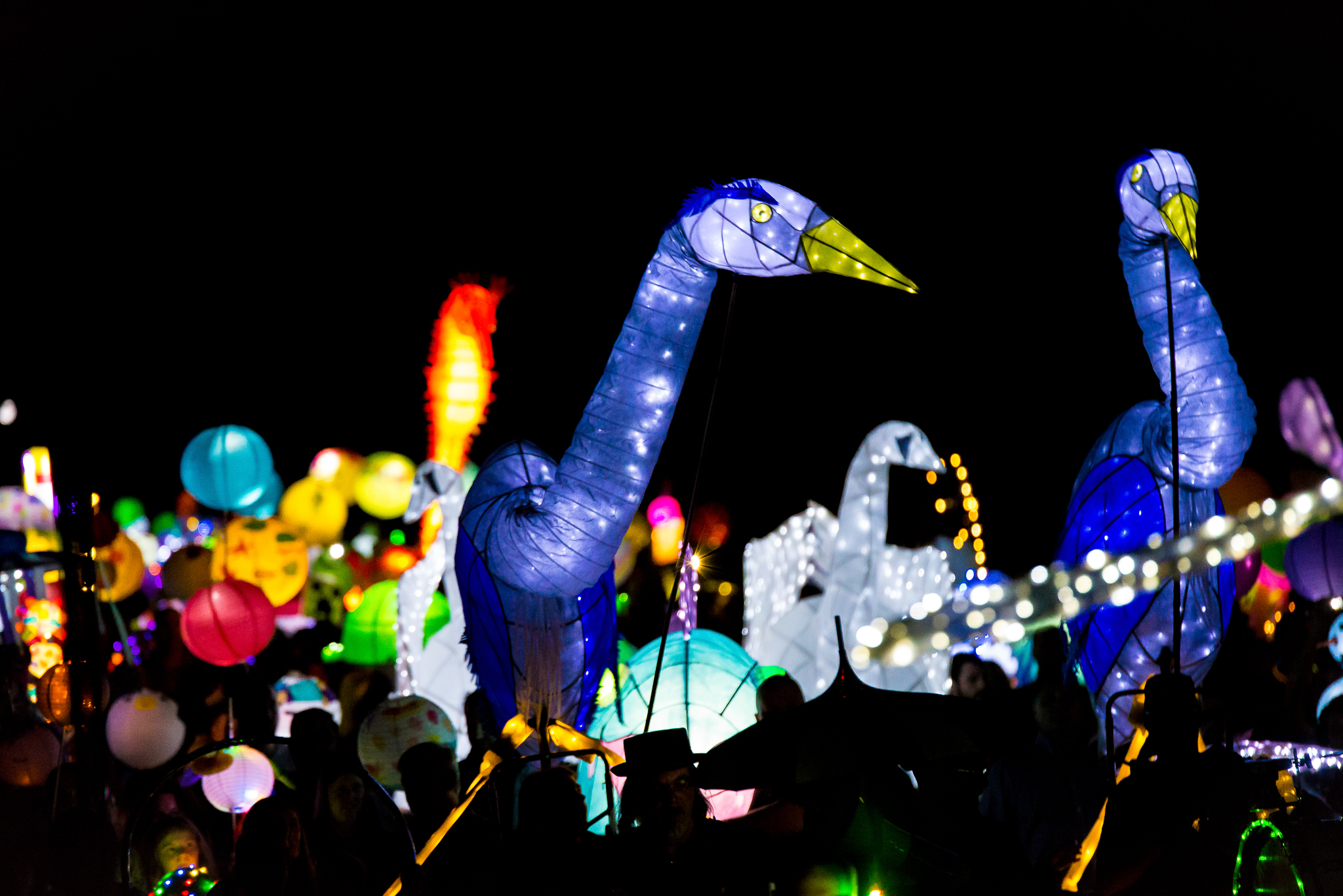photo of lantern parade
