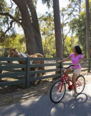 Girl on bike cycling by a horse.