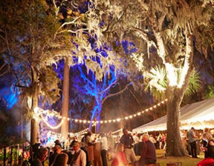 An event in the forest with twinkly lights