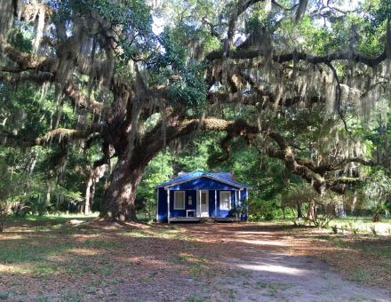 Blue house on Daufuskie Island
