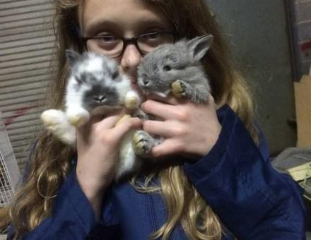 photo of charli bobinchuck with baby bunnies