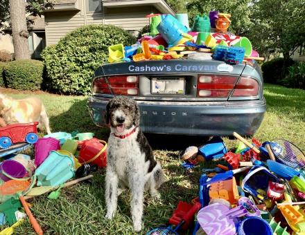 Cashew's Caravan filled with toys collected from daily beach walks in Sea Pines.