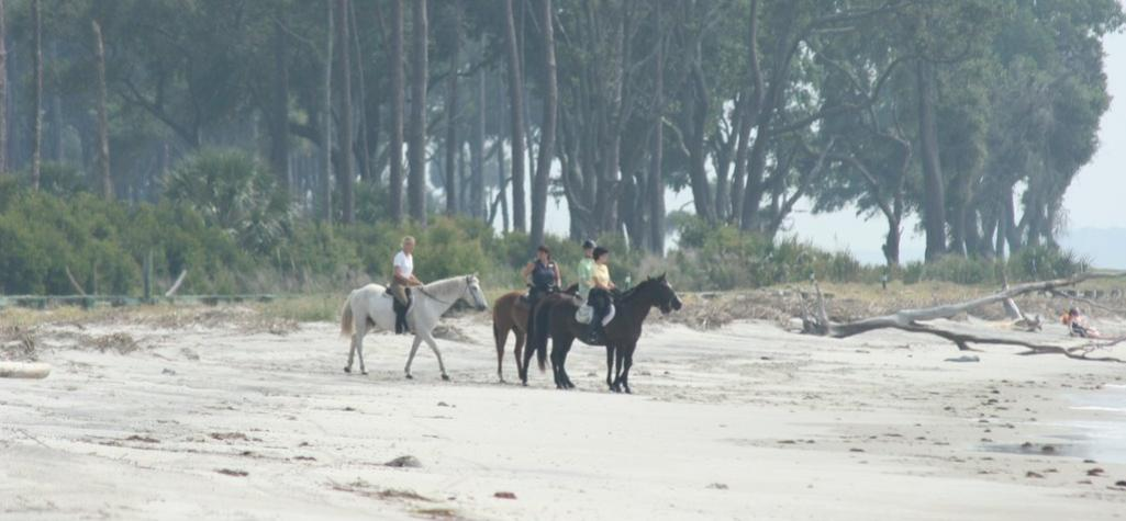 Horseback riding on Daufuskie Beach