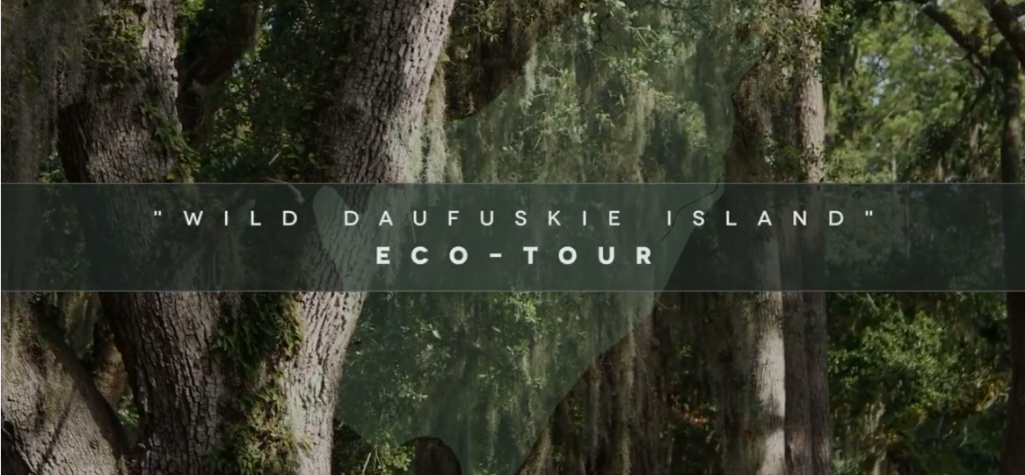 Tour Daufuskie Island Eco Tour Video