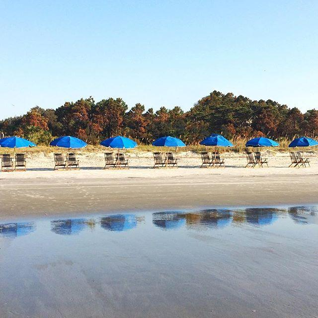 beach chairs in a row