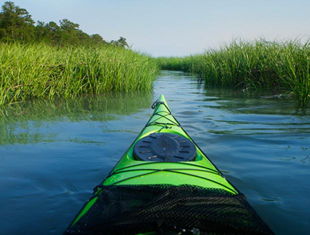 Kayak Hilton Head