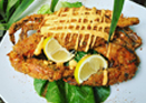 Carolina Crab Company Panko Fried Stuffed Blue Crab
