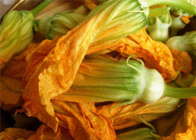 Local Stuffed Squash Blossoms