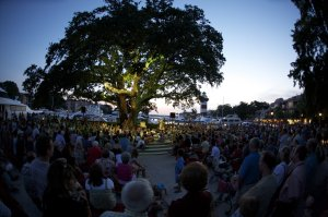 View of the crowd for a performance by Gregg Russell under the Liberty Oak