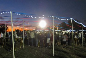 A beautiful evening under the stars at the Oyster Festival. Shelter Cove Community Park is adjacent to Broad Creek.