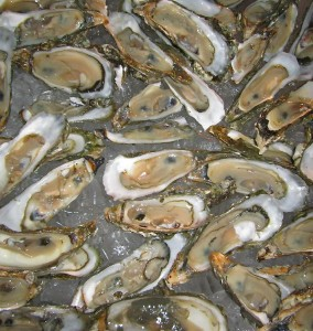 Local Hilton Head Island oysters are known and appreciated the world over for their briny sweetness